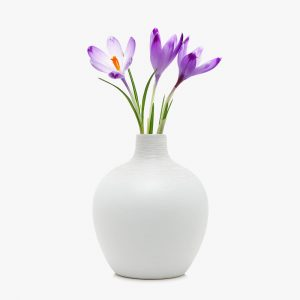 http://estato.bold-themes.com/property-sale/wp-content/uploads/sites/2/2016/08/white-vase-300x300.jpg